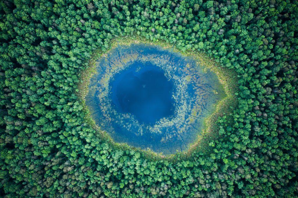 sinnbildliches Foto für hochsensible Führungskräfte von einem See umgeben von Wald